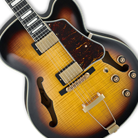 Semi-Hollow Electric