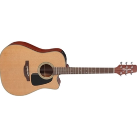 Takamine Dreadnought C/A Solid Cedar Top / Sapele Back & Sides