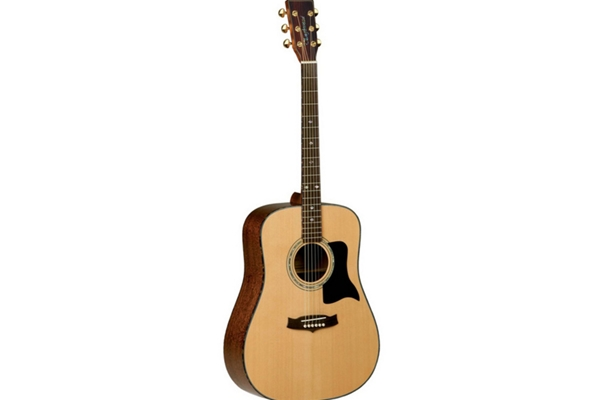 Tanglewood TW15DLX Acoustic Guitar